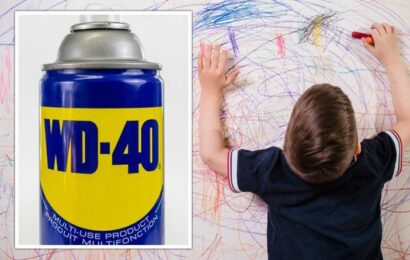 WD-40 life hacks: The FIVE areas you can use WD-40 to improve your home