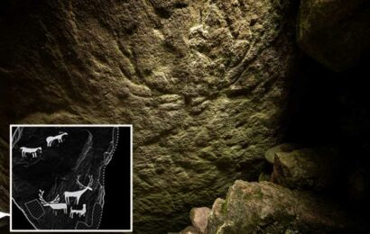 Prehistoric carvings of deer dating back 5000 years found in Scottish tomb