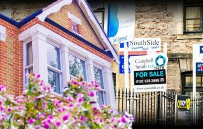 Property experts share whether you should buy a home now or wait until 'prices settle'
