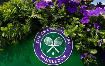Ash Barty beats Karolina Pliskova at Wimbledon for her second Grand Slam title