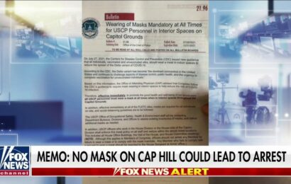 Capitol physician called out for not wearing mask while briefing House members on new mask mandate
