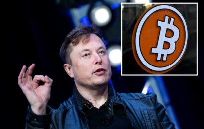 Elon Musk's Dogecoin theory causes cryptocurrency prices to surge in $200BILLION crypto rally