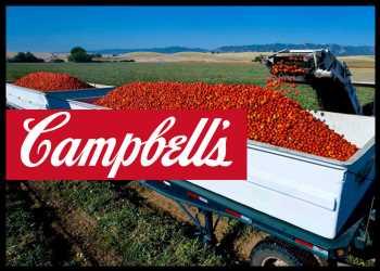 Campbell Soup Q4 Profit Beats Estimates; Issues FY22 Outlook